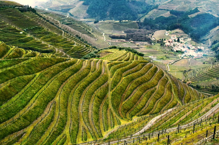 Douro Valley: so much more than wine